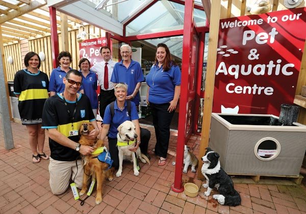 Nice Guide Dogs   Pet Centre