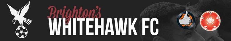 The Mighty Hawks
