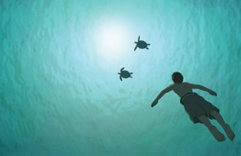 red_turtle_the_swimming_boy