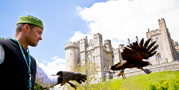 Living-History-Day-Falconry_Rrmphotography